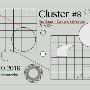 Cluster #8
