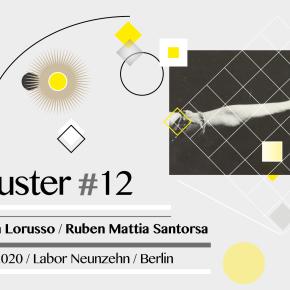 Cluster #12