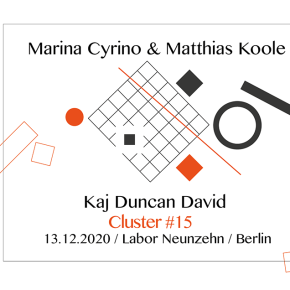 Cluster #15 / Kaj Duncan David, Matthias Koole and Marina Cyrino